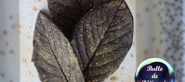 Décor de dessert : les feuilles en chocolat