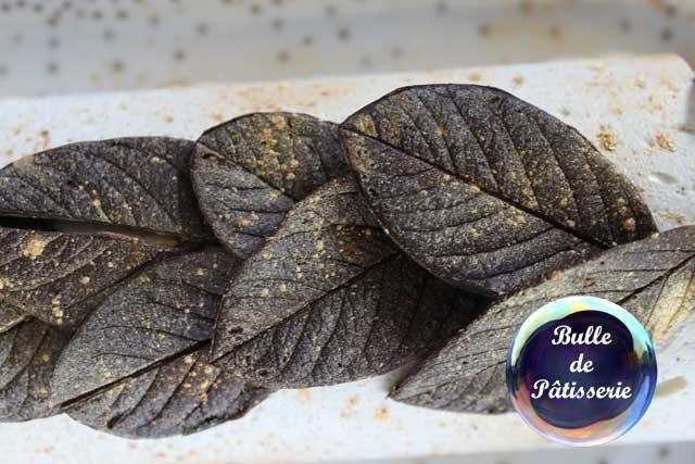 Décor de Bûches : feuilles en chocolat