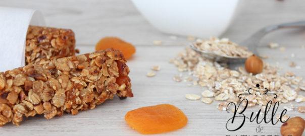 Barres de Céréales fait-maison : Abricots-Noisettes