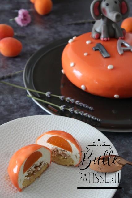 Insert Abricot, mousse vanille, biscuit namandier et croustillant